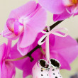 Tiny decorative collectible shoes — Stockfoto