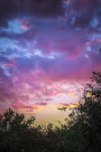 Summertime Sunset — Stock Photo