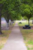 A Walk through the park — Stock Photo