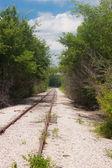 Along the Rails — Stock Photo