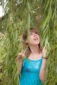 Looking up through the Willow — Stock Photo