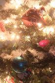 Aggie christmas — Stock Photo