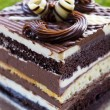 Chocolate Layer Cake — Stock Photo