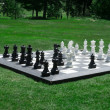 Outdoor Chess Match — Stock Photo