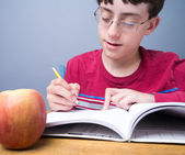 Middle School Student working — Foto Stock