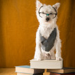 Back to School Dog — Foto Stock