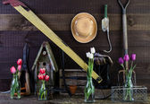 Gardening Tool Shed Interior Background — Stock Photo