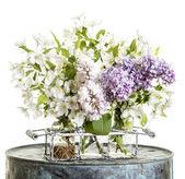 Fresh picked flowers — Stock Photo