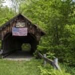 Old covered bridge — Stock Photo #26055817