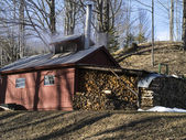 Classic New England maple sugar shack — Stock Photo