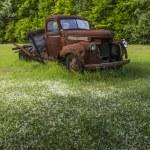 Old vintage farm truck under crab apple tree — Stock Photo #30697235