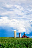Farm cornfield and storm clouds — Stock Photo