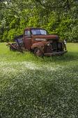 Old vintage farm truck under crab apple tree — Stock Photo
