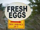 Znak dla świeżych jaj — Zdjęcie stockowe