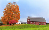 Farm landscape with fall foliage — Стоковое фото