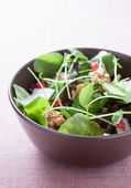 Salad with lettuce, pomegranate, walnuts and cheese — Stock Photo