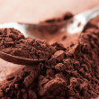 Постер, плакат: Cocoa powder on a spoon