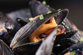 Single steamed mussel close-up — Stock Photo