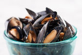 Steamed mussels on blue bowl — Stock Photo