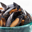 Steamed mussels on blue bowl — Stock Photo #27402207