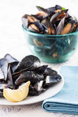 Dish of mussel shells and bowl of mussels — Stock Photo