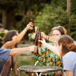 Group of friends making a toast — Stock Photo