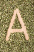 Letter A written with oregano — Stock Photo