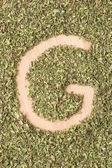 Písmeno g s oreganem — Stock fotografie