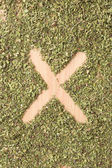 Letter X written with oregano — Stock Photo