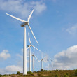 Group of windmills for renewable electric energy production — Stock Photo