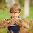 Little boy gardening outdoors — Stock Photo