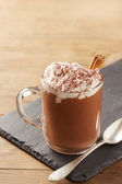 Cup of hot chocolate with whipped cream and cinnamon — Stock Photo