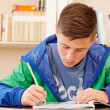 Male teenager concentrated doing homework — Stock Photo #37042013