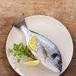 Stock Photo: Raw gilt head bream