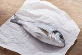 Raw gilt head bream — Stock Photo