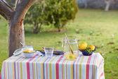 Preparing homemade lemonade in garden — Stock Photo