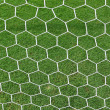 White football net, green grass — Stok fotoğraf