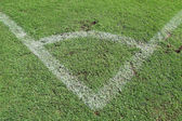 Green grass, soccer field v — Stockfoto