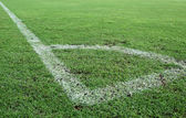 Green grass, soccer field — Stock Photo