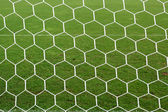White football net, green grass — Stock Photo