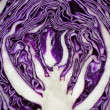 Close up on red cabbage — Stock Photo