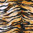 Fabric tiger — Stock Photo