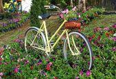 Staré kolo s květinami v přední košík, zaparkované v gard — Stock fotografie