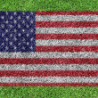 A flag of American as painting on green grass background — Stock Photo #13366961