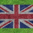 Royalty-Free Stock Photo: A flag of british as painting on green grass background