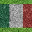 Royalty-Free Stock Photo: A flag of italy as painting on green grass background
