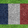 Royalty-Free Stock Photo: A flag of france  as painting on green grass background