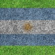 Flag of Argentina as a painting on green grass background - Stock Photo