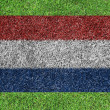 Netherlands flag as a painting on green grass - Stock Photo