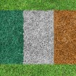 Stock Photo: Flag Republic of Ireland as painting on green grass